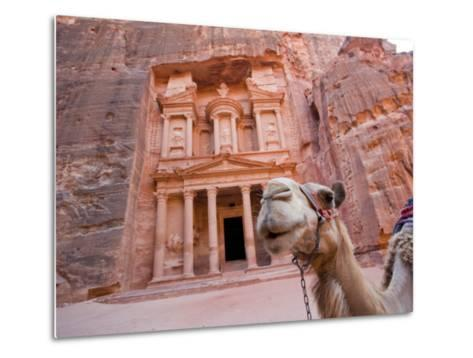 The Treasury, Petra, Jordan-Michele Falzone-Metal Print