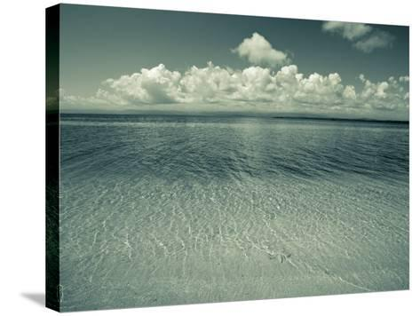 Colon Island Star Beach, Bocas Del Toro Province, Panama-Jane Sweeney-Stretched Canvas Print