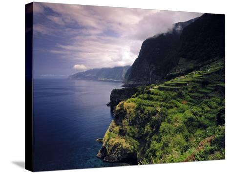 Terraced Vineyards, Seixal, Madeira, Portugal-Walter Bibikow-Stretched Canvas Print
