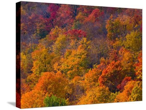 White Mountain National Park, New Hampshire, USA-Alan Copson-Stretched Canvas Print