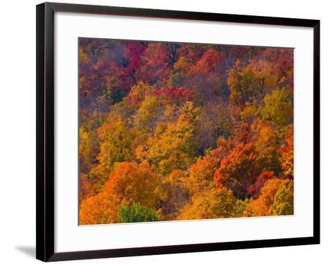 White Mountain National Park, New Hampshire, USA-Alan Copson-Framed Art Print