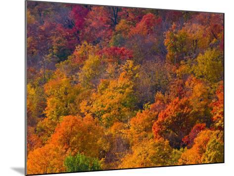 White Mountain National Park, New Hampshire, USA-Alan Copson-Mounted Photographic Print
