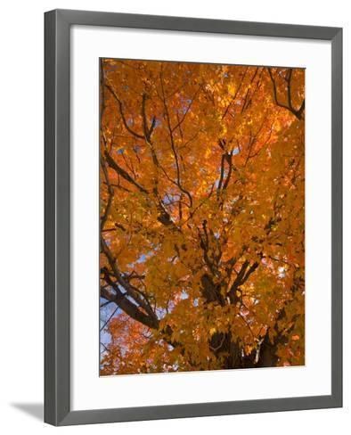 Gorham, New Hampshire, USA-Alan Copson-Framed Art Print