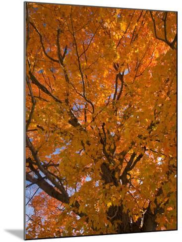 Gorham, New Hampshire, USA-Alan Copson-Mounted Photographic Print