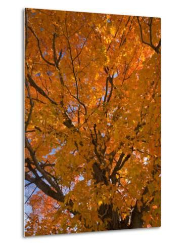 Gorham, New Hampshire, USA-Alan Copson-Metal Print