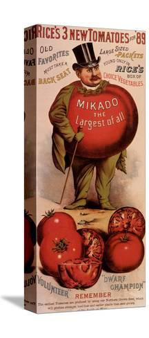 Rice's Tomato Seeds, Mikado, c.1889--Stretched Canvas Print