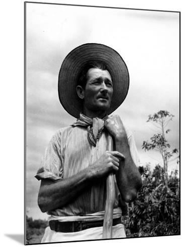 Italian Man Working in the Field, Cleaning the Coffee Trees-John Phillips-Mounted Photographic Print
