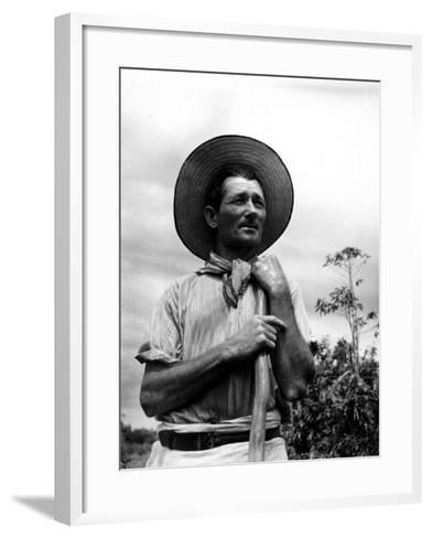Italian Man Working in the Field, Cleaning the Coffee Trees-John Phillips-Framed Art Print