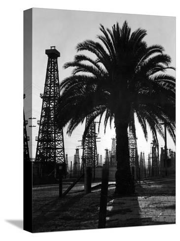 Billowing Palm Tree Gracing the Stark Structures of Towering Oil Rigs-Alfred Eisenstaedt-Stretched Canvas Print