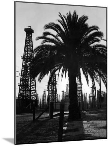 Billowing Palm Tree Gracing the Stark Structures of Towering Oil Rigs-Alfred Eisenstaedt-Mounted Photographic Print