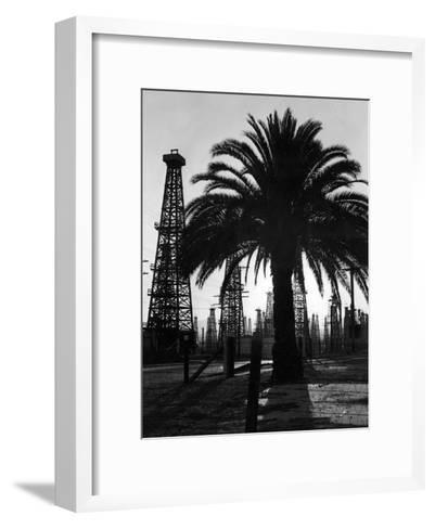 Billowing Palm Tree Gracing the Stark Structures of Towering Oil Rigs-Alfred Eisenstaedt-Framed Art Print