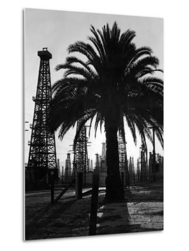 Billowing Palm Tree Gracing the Stark Structures of Towering Oil Rigs-Alfred Eisenstaedt-Metal Print