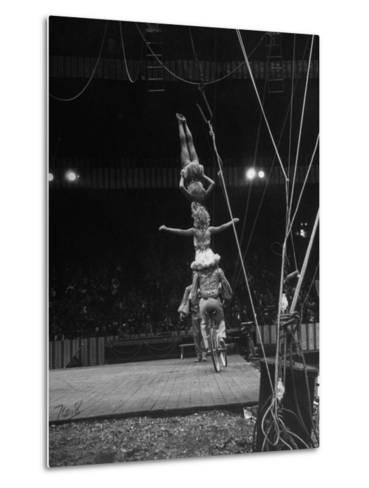 Circus Stacked Up Trio Casually Bicycling around the Board-Ralph Morse-Metal Print