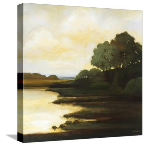 Serenity I-Mary Calkins-Stretched Canvas Print