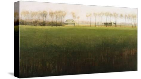 Treeline-Kirk Tatom-Stretched Canvas Print