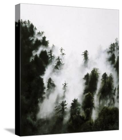 Fog and Redwoods-Jill Tishman-Stretched Canvas Print