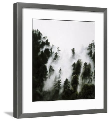 Fog and Redwoods-Jill Tishman-Framed Art Print