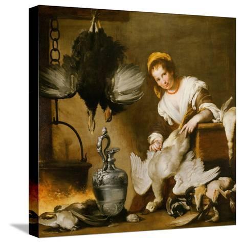 The Cook-Bernardo Strozzi-Stretched Canvas Print