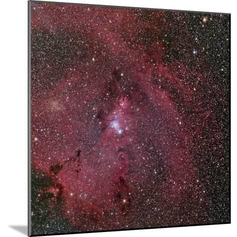 NGC 2264, the Cone and Christmas Tree Nebula-Stocktrek Images-Mounted Photographic Print