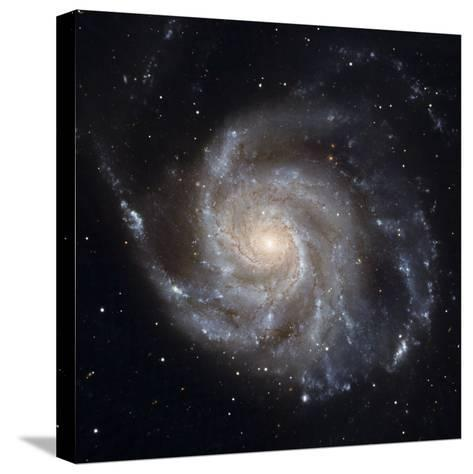 Messier 101, the Pinwheel Galaxy-Stocktrek Images-Stretched Canvas Print
