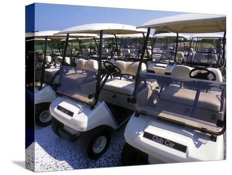 Fleet of Golf Carts Awaiting Avid Golfers, USA-Darlyne A^ Murawski-Stretched Canvas Print