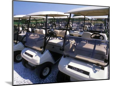 Fleet of Golf Carts Awaiting Avid Golfers, USA-Darlyne A^ Murawski-Mounted Photographic Print
