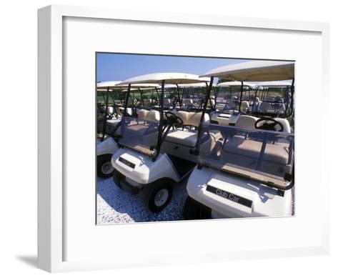 Fleet of Golf Carts Awaiting Avid Golfers, USA-Darlyne A^ Murawski-Framed Art Print