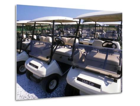 Fleet of Golf Carts Awaiting Avid Golfers, USA-Darlyne A^ Murawski-Metal Print
