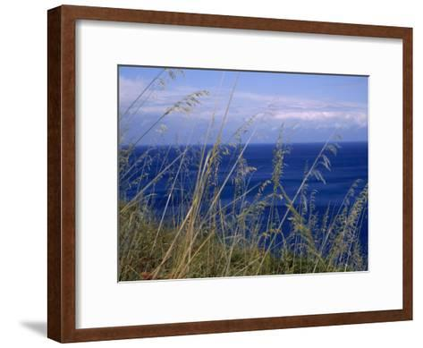 View of the Sea Through Grasses Atop a Hill-Marcia Kebbon-Framed Art Print