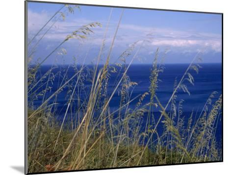 View of the Sea Through Grasses Atop a Hill-Marcia Kebbon-Mounted Photographic Print