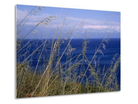 View of the Sea Through Grasses Atop a Hill-Marcia Kebbon-Metal Print