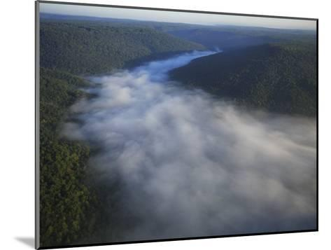 Mist Rises from the Gorge of Lost Cove, Lost Cove, Sewanee, Tennessee, USA-Stephen Alvarez-Mounted Photographic Print