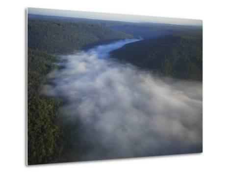 Mist Rises from the Gorge of Lost Cove, Lost Cove, Sewanee, Tennessee, USA-Stephen Alvarez-Metal Print