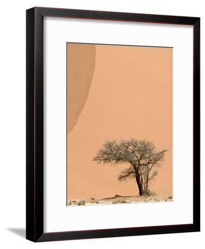 Acacia Tree Dwarfed by an Immense Sand Dune at Sunset-Jason Edwards-Framed Art Print