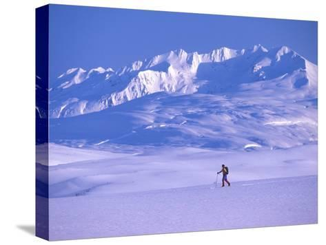 Cross-Country Skier in an Arctic Landscape, Yukon Mountains, Canada-Nick Norman-Stretched Canvas Print