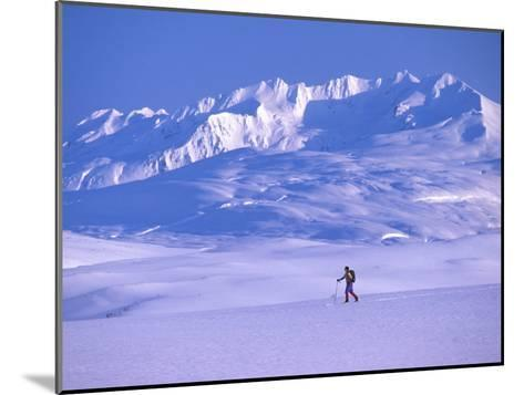Cross-Country Skier in an Arctic Landscape, Yukon Mountains, Canada-Nick Norman-Mounted Photographic Print
