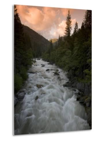 Late Afternoon on the Middle Fork of the Stanislaus River-Phil Schermeister-Metal Print