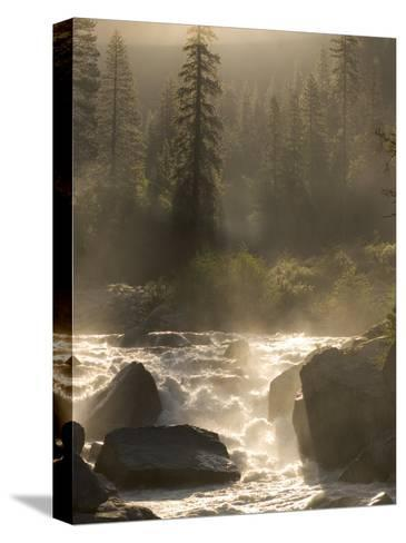 North Fork of the Stanislaus River Near Dorrington at 6,000 Feet-Phil Schermeister-Stretched Canvas Print