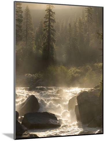 North Fork of the Stanislaus River Near Dorrington at 6,000 Feet-Phil Schermeister-Mounted Photographic Print