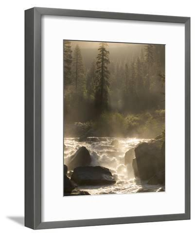 North Fork of the Stanislaus River Near Dorrington at 6,000 Feet-Phil Schermeister-Framed Art Print