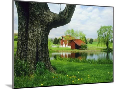 Tree Frames a View of a Farm Reflected in a Pond, Virginia-Annie Griffiths Belt-Mounted Photographic Print