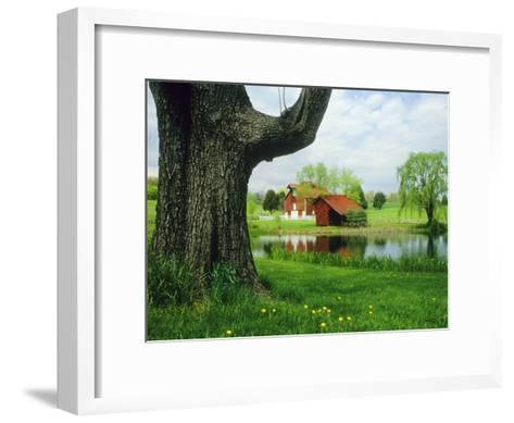 Tree Frames a View of a Farm Reflected in a Pond, Virginia-Annie Griffiths Belt-Framed Art Print