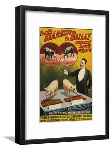 Barnum and Bailey, Poster, 1900--Framed Art Print