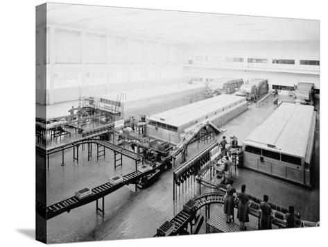 The Bottling Department at the Peroni Factory in Naples-A^ Villani-Stretched Canvas Print