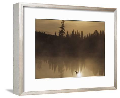 A Bird Flies Low over Fog-Shrouded Lake Superior-Medford Taylor-Framed Art Print