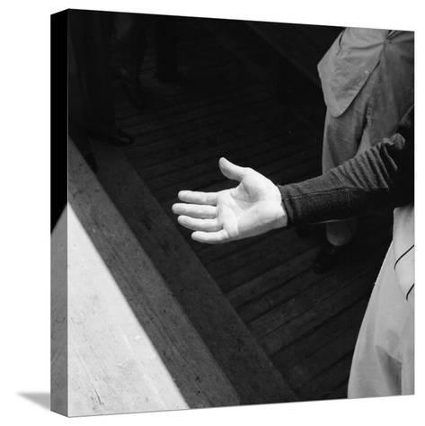 Bare Hand of Baseball Player Ted Williams-Ralph Morse-Stretched Canvas Print
