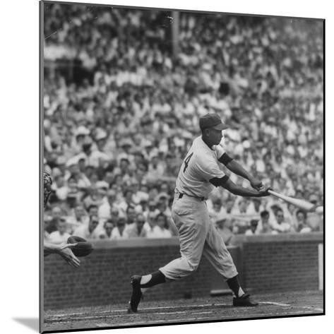Action Shot of Chicago Cub's Ernie Banks Smacking the Pitched Baseball-John Dominis-Mounted Premium Photographic Print