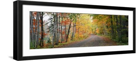 Road Passing Through a Forest, Keweenaw County, Keweenaw Peninsula, Michigan, USA--Framed Art Print
