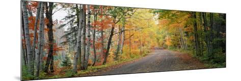 Road Passing Through a Forest, Keweenaw County, Keweenaw Peninsula, Michigan, USA--Mounted Photographic Print