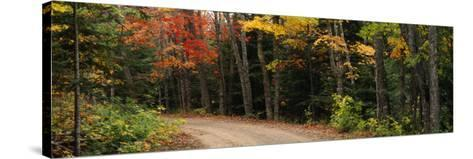 Road Passing Through a Forest, Keweenaw County, Keweenaw Peninsula, Michigan, USA--Stretched Canvas Print
